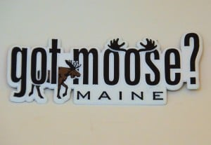 Maine Refrigerator Magnet – Got Moose?
